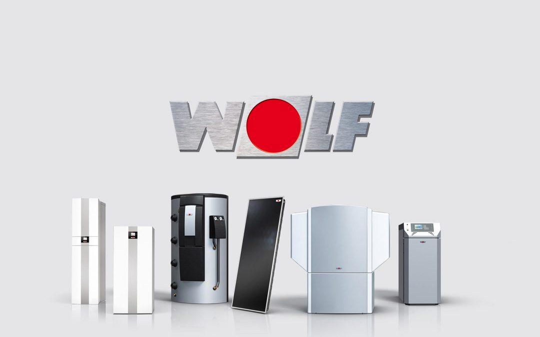 Εξειδικευμένο service Wolf